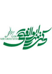 Dr. Seyed Amir Mirabolfathi